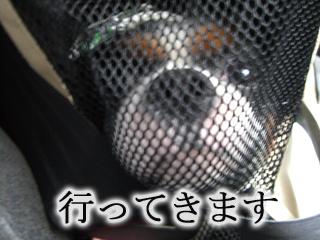 CIMG1337.jpg