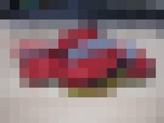 CIMG1880m1.jpg