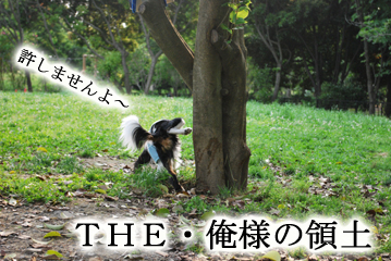 DSC_0073_142.jpg