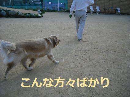 2008_0427ドッグラン20140