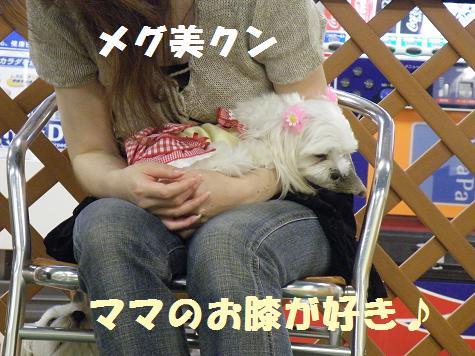 2008_0526オフ会0040