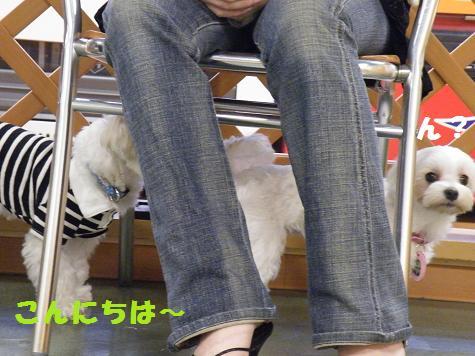 2008_0526オフ会0039