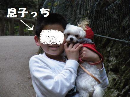 2008_03290016.jpg