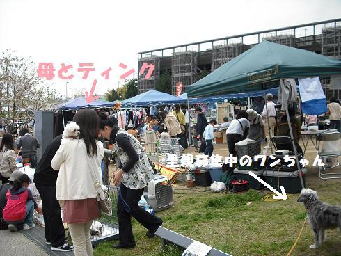 2008_04140033.jpg