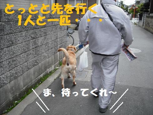 2008_04190004.jpg