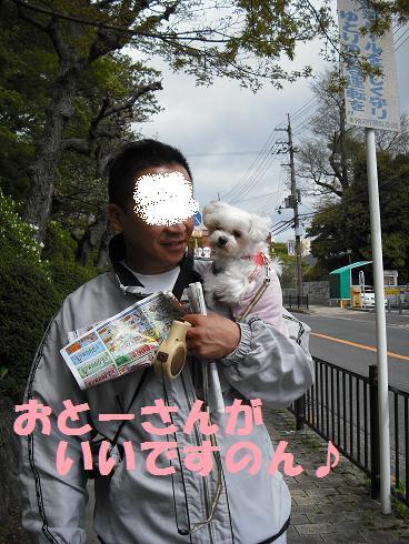 2008_04190008.jpg
