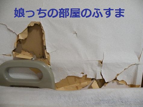 2008_04240004.jpg