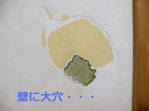2008_04240005.jpg