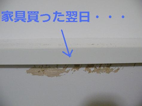 2008_04240013.jpg