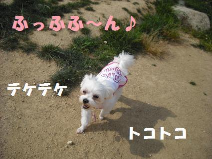 2008_05060010.jpg