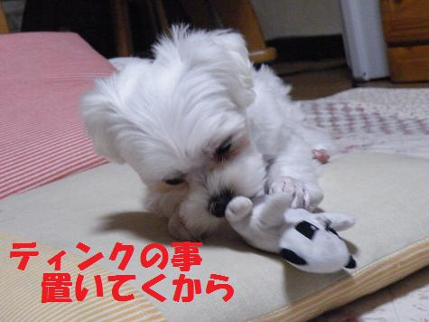 2008_05100005.jpg