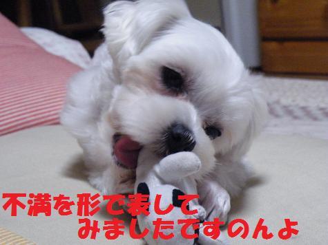 2008_05100007.jpg