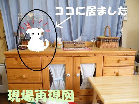 2008_05140050.jpg
