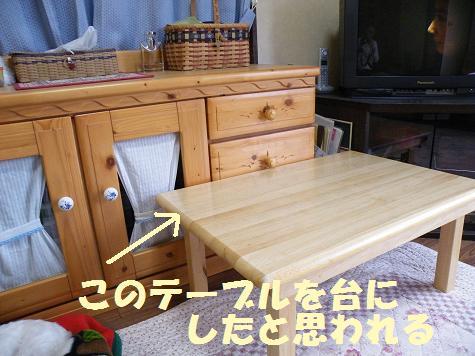 2008_05140051.jpg