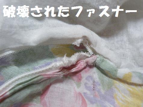 2008_06040003.jpg