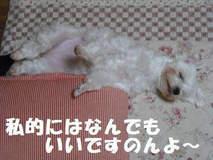 2008_060702.jpg