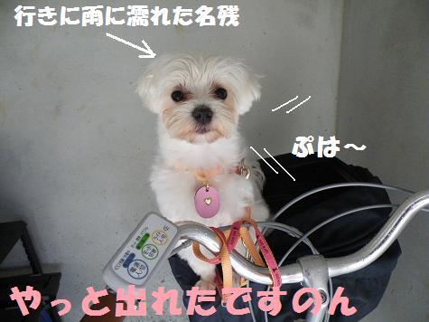 2008_060707.jpg