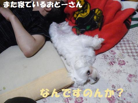2008_06180011.jpg