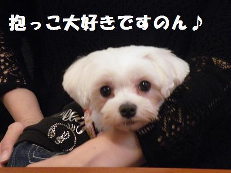 2008_07140008.jpg