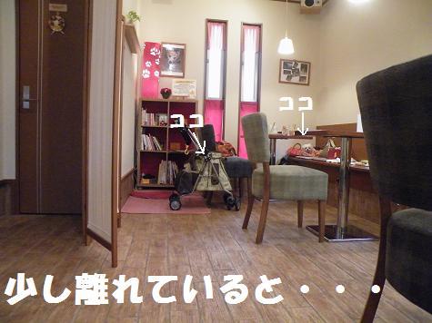 2008_07140018.jpg