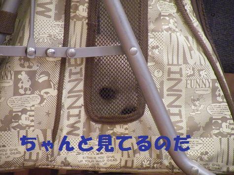 2008_07140019.jpg