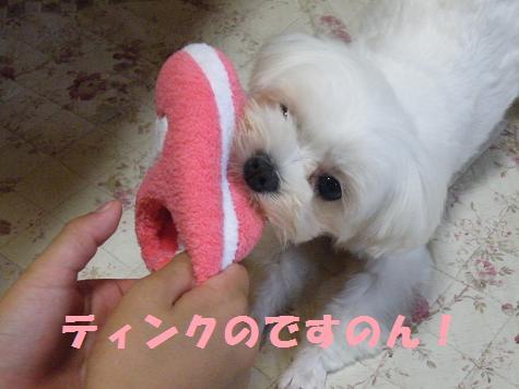 2008_07140036.jpg
