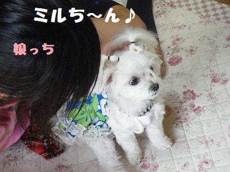2008_07290005.jpg
