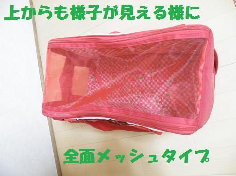 2008_08070033.jpg