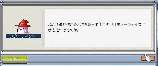 Maple0001 (6)