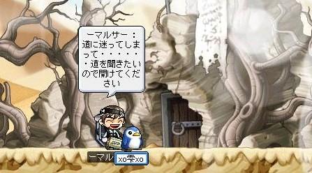 Maple0003_20080417210233.jpg