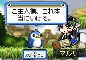 Maple0012_20080511153926.jpg