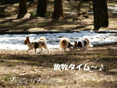 2008032214.jpg