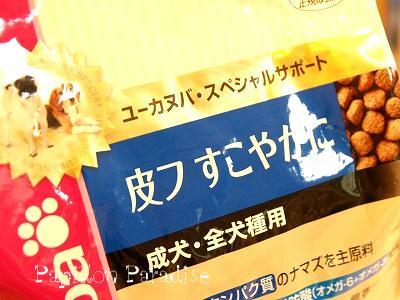 2008050502.jpg