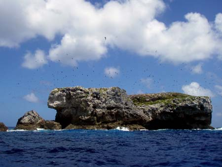 goat island ( aguijan )
