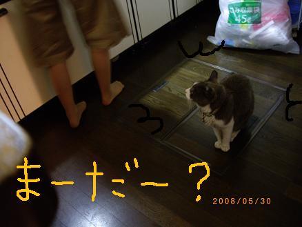 20080530 009111