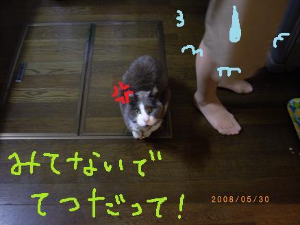 20080530 0121111