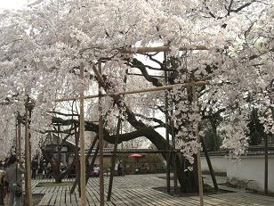 醍醐寺・三宝院・大玄関
