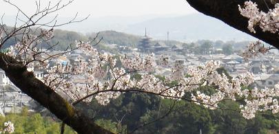 法隆寺遠望