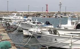 地元の沿岸漁業漁港