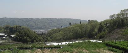 生駒山系より谷田丘陵を望む