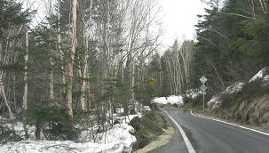 濁河温泉→御岳スキー道路