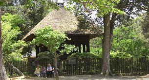 奈良公園・外人観光客