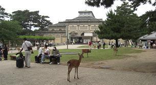 奈良国立博物館2