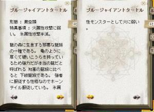 亀カード情報2