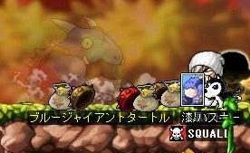 亀カード^^でるんかい