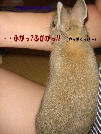 DSC04001改