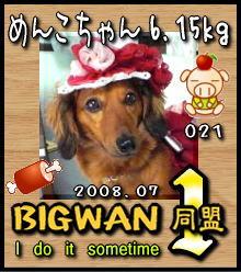 へたれりっくんBIGWAN1同盟No.21(2008.7.26)
