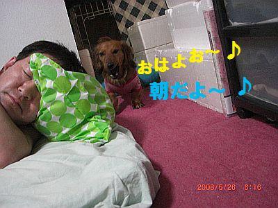 CIMG6298.jpg