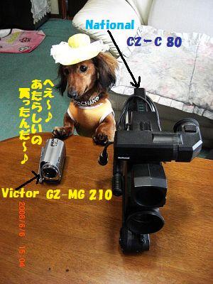 CIMG7305.jpg