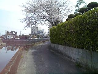 20080406101855